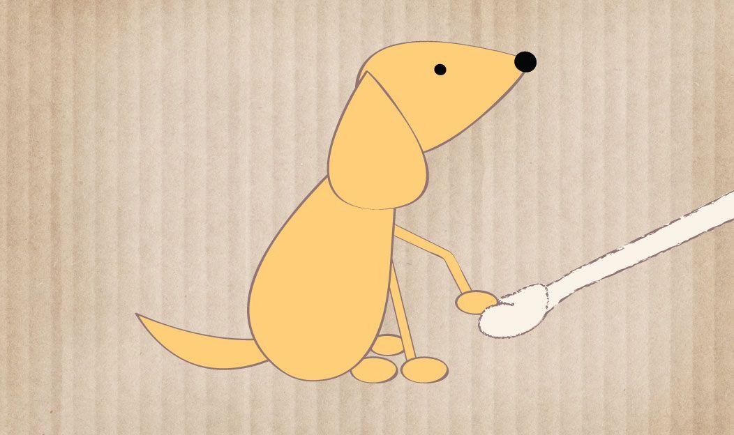 O cão em adestramento