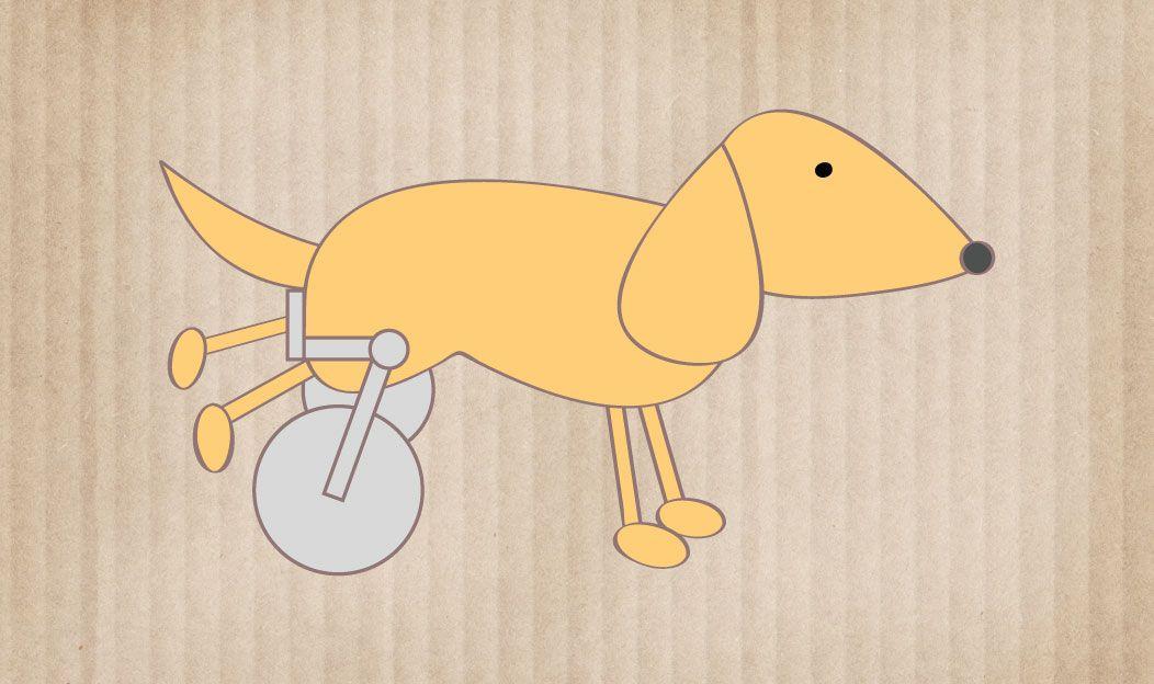 O cão especial ou com problemas de locomoção
