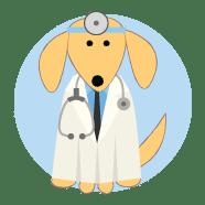 Curso de Formação em Massoterapia Canina