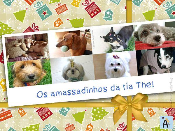 Durante a última semana, demos várias dicas de como a massoterapia canina pode melhorar a saúde e facilitar a vida do seu melhor amigo!