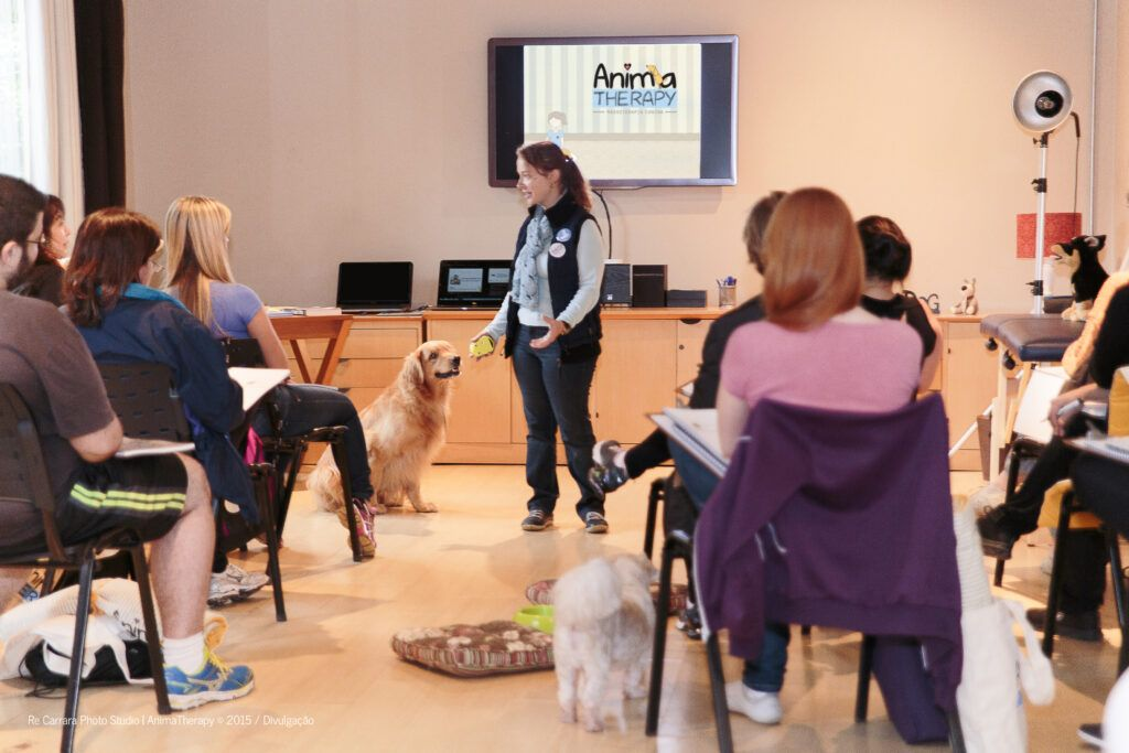 workshop-massagem-relaxante-para-cães