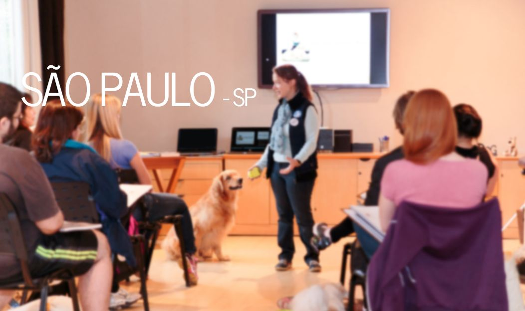 INSCRIÇÕES ENCERRADAS! Workshop AnimaTherapy de Massagem Relaxante para Cães