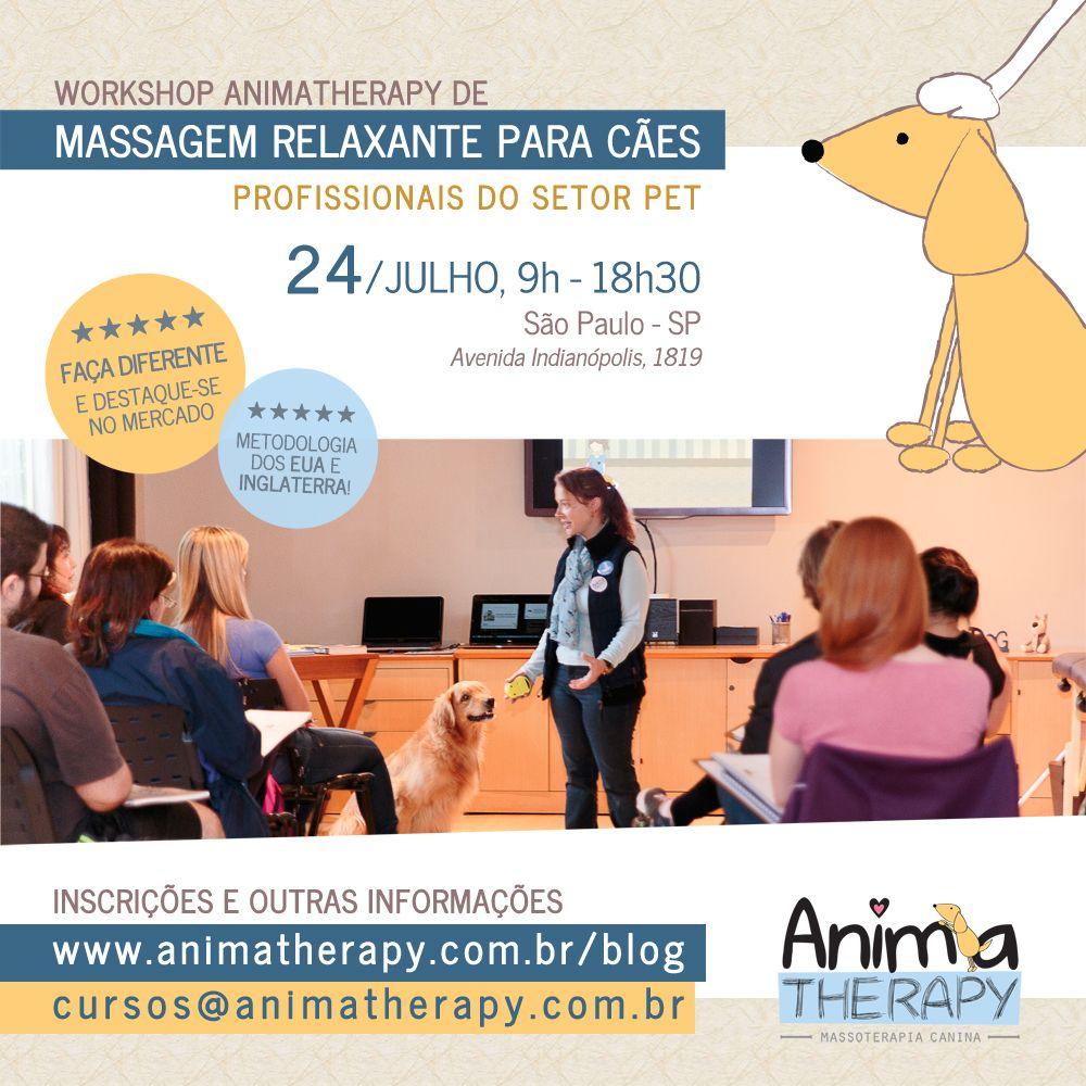 Workshop de Massagem Relaxante para Cães AnimaTherapy