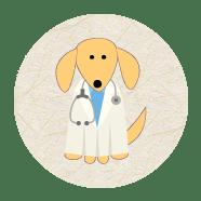Auxiliares veterinários, Zootecnistas e Biólogos