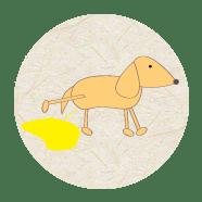 Especialistas em comportamento canino