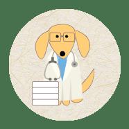 Estudantes de medicina veterinária