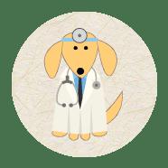 Médicos veterinários