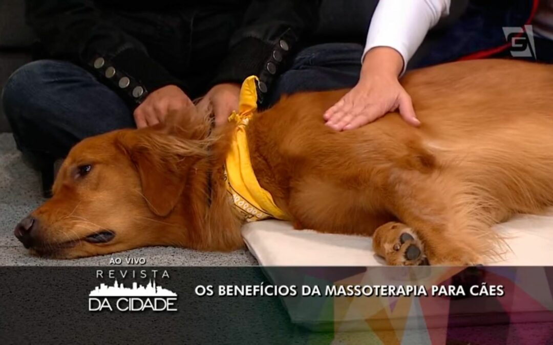 Massoterapia Canina na Tv Gazeta
