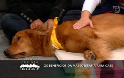 Massoterapia Canina na Tv Gazeta