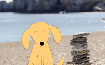 Como deixar seu cão relax?