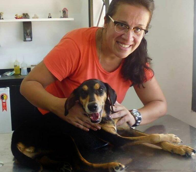 DEPOIMENTO   Marcia Dias, pet sitter