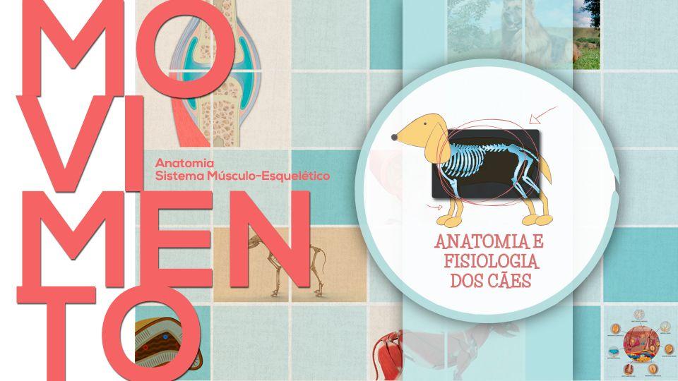Curso Online sobre Anatomia dos Cães (para não-veterinários!)